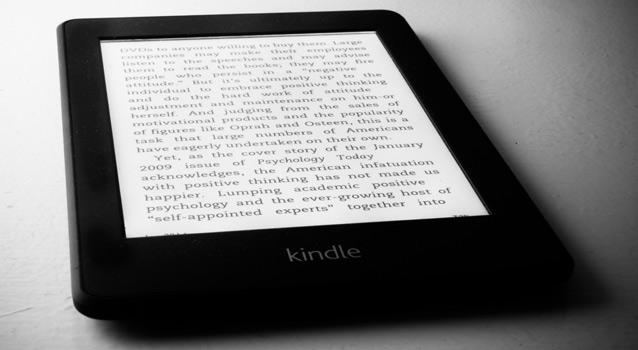 Hvad i alverden skete der for e-bogen i 2013?